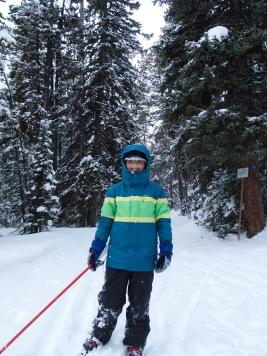 Happy blue skiing goblin